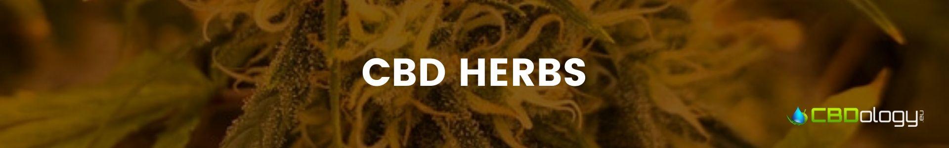CBD Herbs