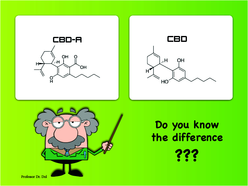 CBD or CBD-A and what is the difference?